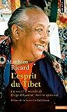 L'Esprit du Tibet. La vie et le monde de Dilgo Khyentsé, maître spirituel