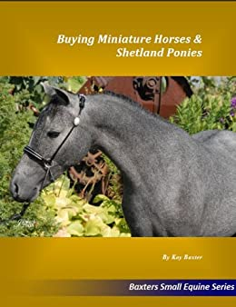 Buying Miniature Horses & Shetland Ponies (Small Equine Series Book