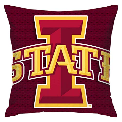 - Love fled Iowa State Zippered Pillow Covers Pillowcases 20X20 Inch Pillow Decorative Throw Pillow Cover,Pillow Cases Cushion Cover for Home Sofa Bedding