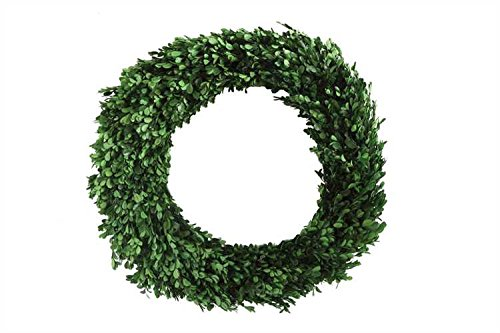 Large Preserved Boxwood Wreath by Heart of America