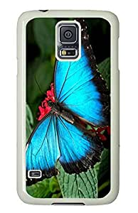 funny Samsung Galaxy S5 covers Blue Butterfly 3 Animal PC White Custom Samsung Galaxy S5 Case Cover