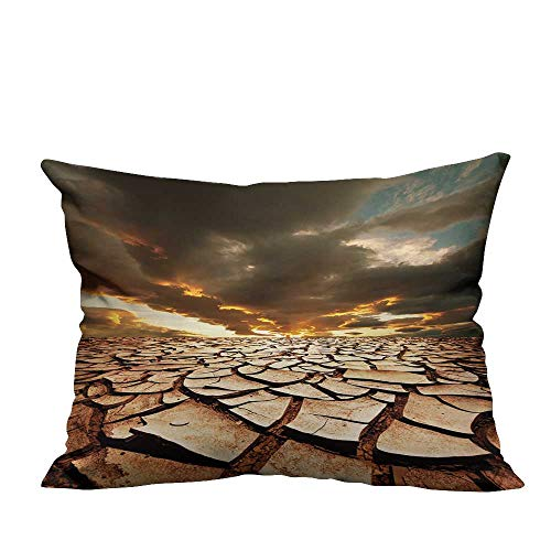 YouXianHome Home DecorCushion Covers Drought Land Comfortable and Breathable(Double-Sided Printing) 19.5x30 ()
