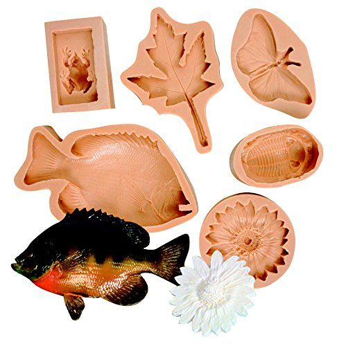 ns Mold includes Maple, Butterfly, Trilobite, Frog, Sunflower and Fish (Set of 6 ) (Fish Small Chart)