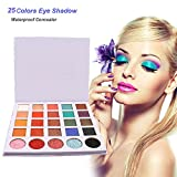 25 Colors Eye Shadow Makeup Cosmetic Shimmer Matte Eyeshadow Palette