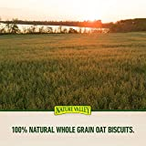 Nature Valley Biscuit Variety Pack