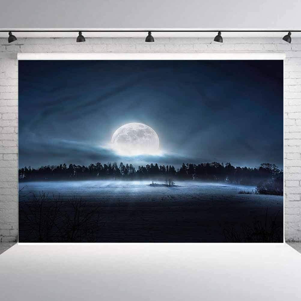 6x6FT Vinyl Photo Backdrops,Night Sky,Crescent Moon Dark Forest Photoshoot Props Photo Background Studio Prop