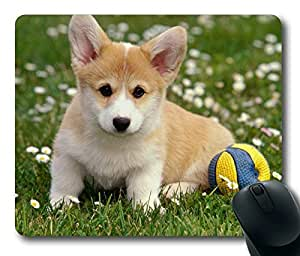 Cute Dog Playing ball Masterpiece Limited Design Oblong Mouse Pad by Cases & Mousepads