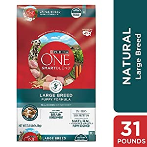 Purina ONE Natural Large Breed Dry Puppy Food; SmartBlend Large Breed Puppy Formula - 31.1 lb. Bag 69