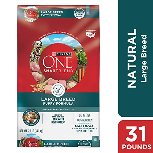 Purina ONE Natural Large Breed Dry Puppy Food, SmartBlend Large Breed Puppy Formula – 31.1 lb. Bag