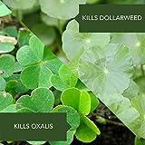 Bioadvanced 100534368 Selective Herbicide, 29