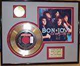 #8: Bon Jovi