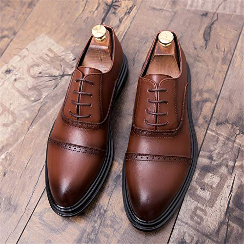 amp;baby Sunny Individuality Classic Resistente All'abrasionecolorMarroneDimensione Comodo Top Oxford Shoes Low 42 Fashion Men's Business EuMarrone Casual eWdxCrBQoE