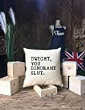 The Office:''Dwight, You Ignorant Slut Pillow cover, The office Quote pillow cover, Home Decor, Gift for Movie Lover