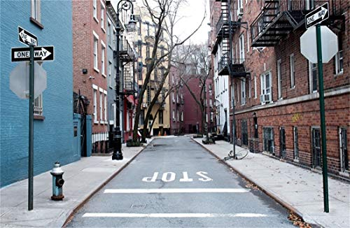 Yeele 10x6.5ft Photography Background Manhattan City Street West Village New York Buildings Downtown NYC Alley Guide Board Stop Parking Photo Booth Backdrop Wallpaper]()