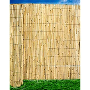 Abaseen Natural Reed Screening Garden Fence Peeled Roll Screen Wind Sun Protractor Privacy Border 1.5mx4