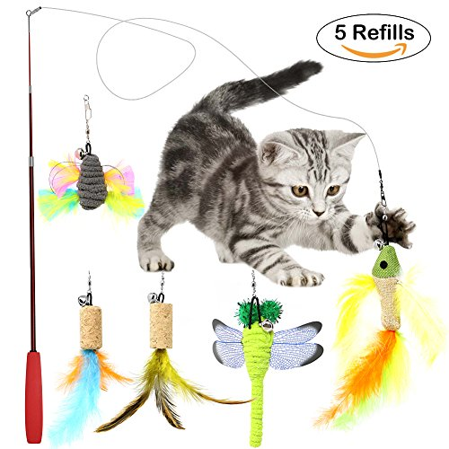 B Bascolor Retractable Cat Toys Interactive Feather Teaser Wand Toy 5 Refills Bird Dragonfly Feathers for Cats Kitten