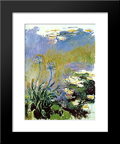 Agapanthus 20x24 Framed Art Print by Monet, Claude ()