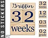 Baby Age Blocks - NO STICKERS - 20 Color Scheme Options! (Example: Navy) - Baby Milestone Blocks