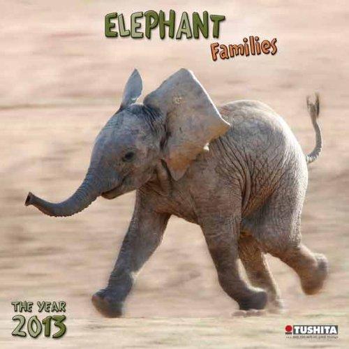 Elephant Families 2013 Wonderful World