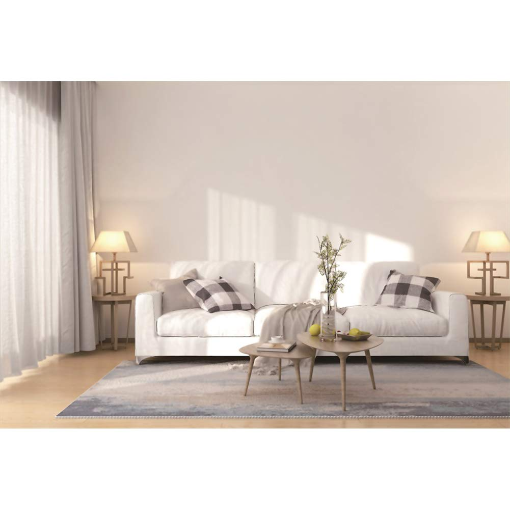 Amazon.com : CSFOTO 6x4ft Interior Decoration Backdrop ...