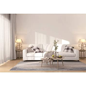Amazon.com : CSFOTO 6x4ft Interior Decoration Backdrop ...