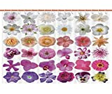 Hexagon Pink Multi Shower Curtain Stylish Shower Curtain [ Floral,Pattern of Vase Flowers Petunia Botanic Wild Orchid Floral Nature Art Decor,White Lilac Pink ] Duty Cute Fabric Shower Curtain for Women