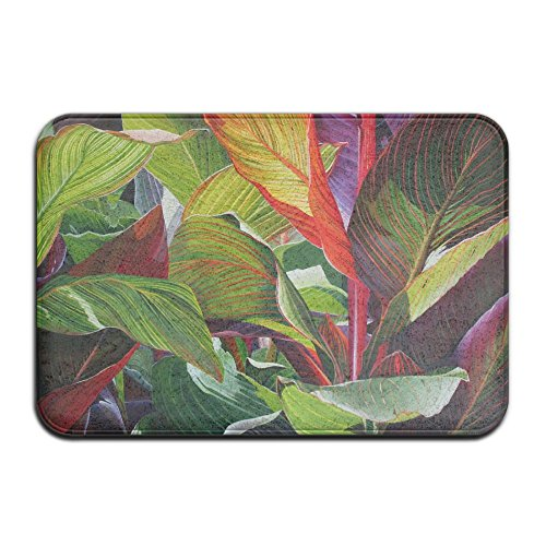 (YangPa Tropical Art Croton Painting Outdoor Rubber Mat Front Door Mats Porch Garage Large Flow Slip Entry Carpet Standard Rug Home 23.62