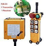Crane Industrial Remote Control F26-C3 with Six