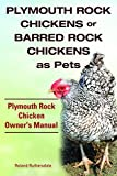 Plymouth Rock Chicken Owner's Manual. Plymouth Rock Chickens or Barred Rock Chickens as Pets.