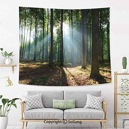 Farm House Decor Wall Tapestry,Forest Morning Haze City Park Ecology Hiking Traveling Destination Scenery Photo,Bedroom Living Room Dorm Wall Hanging,60X50 Inches,Green Brown