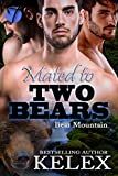Mated to Two Bears (Bear Mountain Book 13)