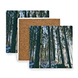 Cold Coniferous Daylight Coasters, Prevent Furniture from Dirty and Scratched, Square Drink Coasters Set Suitable for Kinds of Mugs and Cups, Living Room Decorations Gift Set of 4