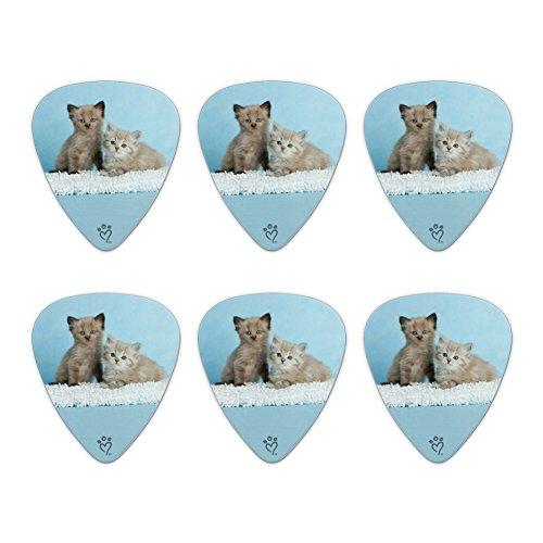 Ragdoll and Tiffany Kitten Cat Friends Novelty Guitar Picks Medium Gauge - Set of (Tiffany Kitten)