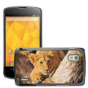 Hot Style Cell Phone PC Hard Case Cover // M00047617 animals cub in wild lion ambush // LG NEXUS 4