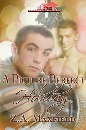 A Picture Perfect Holiday (MLR Press Story A Day For the Holidays 2011 Book 4)