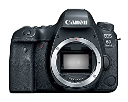 Image of the product Canon EOS 6D Mark II that is listed on the catalogue brand of Canon. It is scored with a 4.4 over 5.