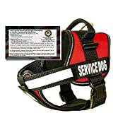 "barkOutfitters Dog Vest Harness with 50 ADA Cards Kit, (22"" - 28"") Girth, Red"
