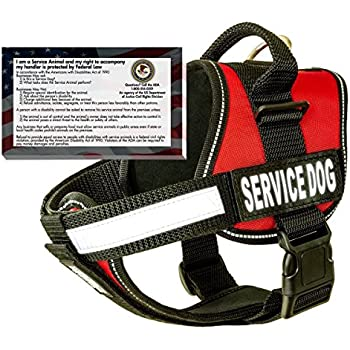 """barkOutfitters Service Dog Vest Harness + 50 ADA Info Cards Kit (Red, XS (14"""" - 17"""" Girth) )"""