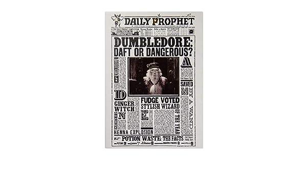 Mint Pagina Dumbledore en el Diario del profeta 12.5cm x 17cm - Harry Potter: Amazon.es: Juguetes y juegos