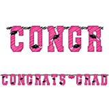 pink and zebra party streamers - Amscan Pink Zebra Grad 10' Letter Banner (Each)