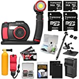 Sealife DC2000 HD Underwater Digital Camera Sea Dragon 2500 LED Light Set + 2 64GB Cards + Batteries & Charger + AquaPod + Suction Cup + Buoy Kit
