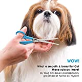 BOSHEL Dog Grooming Scissors Set - 2 Pet Grooming
