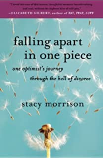 Suzanne finnamore split a memoir of divorce