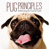 Pug Principles, Willow Creek Staff, 1607554542