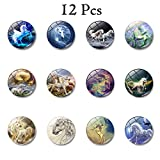 Powerful Stainless Steel Refrigerator Magnets 12
