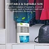 LONOVE Dehumidifier - 2200 Cubic Feet Small