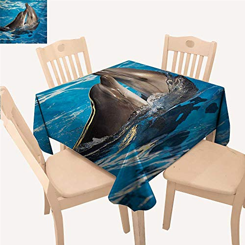 - Dolphin Jacquard Tablecloth Aqua Show Pair of Valentines Dolphins Dancing in Pool Animal Tenderness Love BBQ Tablecloth Blue Dark Taupe W 60