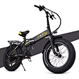 ENGWE PLID-1 Beach Fat Tire Electric Bike – Foldable 20-inch Wheels Off-Road eBike with Power Assist, Rear Shelf and Shimano 6-Speed Gear Shifts