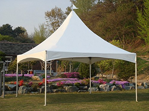 Commercial High Peak Canopy (Eurmax Heavy Duty Commercial Cast Aluminum High Peak Marquee Tent Canopy (10x13))