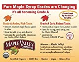 Maple Valley Grade A Dark & Robust (formerly Grade B) Organic Maple Syrup - 1/2 Gallon (64 Oz) BPA-free Jug